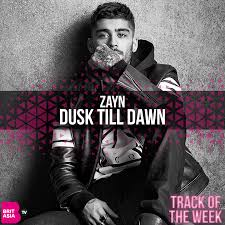 Zayn Dusk Till Dawn Ft Sia Visualnoiz Tv